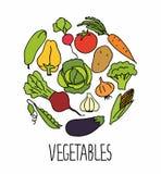 L'ensemble de légumes sains frais, chacun est pour l'usage facile Illustration Stock