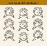 L'ensemble de labels de races de chien, chien matraque des emblèmes Photos stock