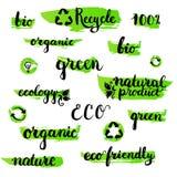 L'ensemble de manuscrit brushpen le mot d'écologie de lettrage et de calligraphie Calibre pour le logo, le label et l'insigne d'e Photo stock