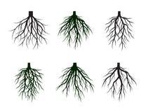 L'ensemble de noir enracine l'arbre Illustration de vecteur illustration de vecteur