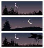 L'ensemble de nuit aménage en parc avec la nouvelle lune et les arbres illustration stock