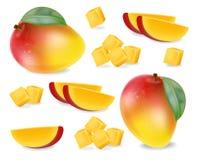 L'ensemble de tranches de fruit de mangue dirigent réaliste Les éléments détaillés conçoivent illustrations 3D illustration de vecteur