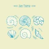 L'ensemble de vecteur objecte des ammonites et des coquilles de mer dans le style de croquis Images libres de droits