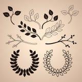 L'ensemble de vintage décoratif s'embranche et tresse illustration stock