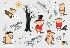 L'ensemble heureux de jour de Groundhog, marmotte mignonne dans le cylindre tient la fleur - le perce-neige blanc, prévision de t Photos libres de droits