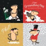 L'ensemble heureux de jour de Groundhog, marmotte mignonne dans le cylindre tient la fleur - le perce-neige blanc, prévision de t Photo libre de droits
