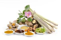 L'ente di erbe della Tailandia sfrega per il trattamento della pelle e l'odore della pelle. Per salute e rilassamento fotografia stock