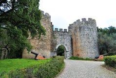 L'entrée principale du château et des canons Photo libre de droits