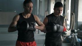 L'entraîneur et le boxeur se préparent à la formation dans le gymnase Athlètes allant et porter des gants de boxe mouvement 4k le banque de vidéos