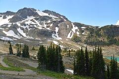 L'environnement de montagne de Whistler Photo libre de droits