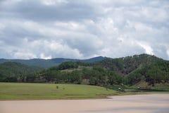 L'environnement et l'écosystème, pré vert près du lac avec le ciel bleu et partie de nuages photos libres de droits