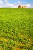 L'erba con la casa Immagine Stock