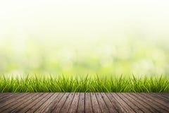 L'erba con verde ha offuscato il fondo ed il pavimento di legno Fotografia Stock Libera da Diritti