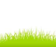 L'erba confina la siluetta su fondo bianco Fotografie Stock