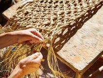 L'erba di sparto del halfah elabora le mani dell'artigiano immagini stock