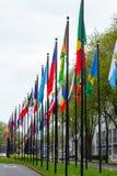 L'erba differente di modo di strada di nazione di molti delle bandiere della via di Europa dei membri del sindacato paesi della c Immagini Stock Libere da Diritti