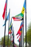 L'erba differente di modo di strada di nazione di molti delle bandiere della via di Europa dei membri del sindacato paesi della c Immagine Stock