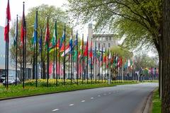 L'erba differente di modo di strada di nazione di molti delle bandiere della via di Europa dei membri del sindacato paesi della c Fotografie Stock