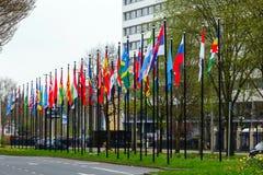 L'erba differente di modo di strada di nazione di molti delle bandiere della via di Europa dei membri del sindacato paesi della c Immagini Stock
