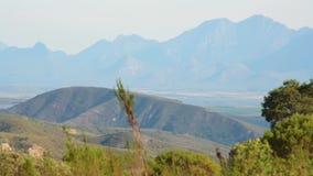 L'erba ondeggia nel vento con le colline e le montagne nella distanza video d archivio