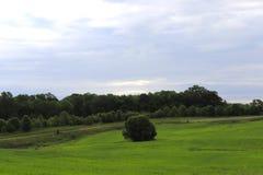 L'erba, Rolling Hills, Treeline e l'ampio cielo nella zona rurale crea la vista splendida immagini stock