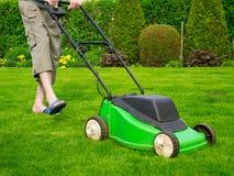 L'erba verde è falciata dalla falciatrice da giardino Fotografie Stock