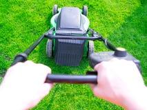 L'erba verde è falciata dalla falciatrice da giardino Fotografia Stock