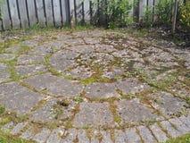 L'erbaccia ha coperto il patio Immagini Stock