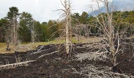 L'eruzione dell'Etna Fotografie Stock Libere da Diritti