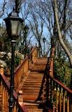 L'escalier Photos stock