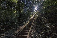 L'escalier pour accéder à la cascade au milieu de la forêt en Santa Rita font Passa Quatro, São Paulo, Brésil photo libre de droits