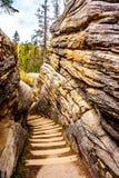 L'escalier raide qui va du haut de l'Athabasca tombe au canyo Photographie stock