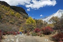 L'escursione immagine stock