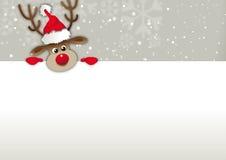 L'espace au nez rouge de copie de renne, Greetingcard, bon Photos stock