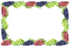 L'espace de copie de copyspace de cadre de fruit de fruits de raisins photographie stock libre de droits