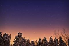 L'espace de lever de soleil dans la forêt Photographie stock