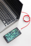 L'espace de travail avec le smartphone avec l'écran de plantes vertes se relie à l'ordinateur portable sur le bureau blanc Images libres de droits