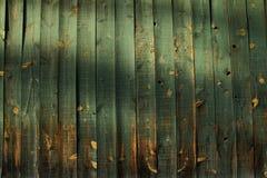 L'espace en bois vert de copie Photographie stock