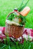 L'espace extérieur de copie d'herbe verte de nourriture de panier de pique-nique Photos libres de droits