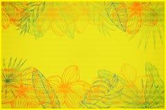 L'espace jaune minable de copie, encadrant des fleurs de plumeria et des feuilles tropicales illustration libre de droits