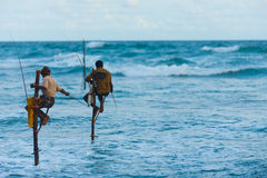 L'espace traditionnel de copie du Sri Lanka de pêcheurs d'échasse Images libres de droits