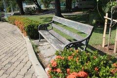 L'espace vert de jardin Image libre de droits