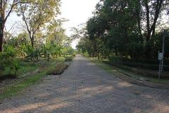 L'espace vert de jardin Photo libre de droits