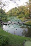 L'espace vert de jardin Photographie stock