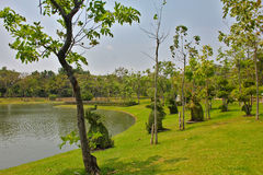 L'espace vert de jardin Image stock