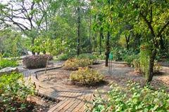 L'espace vert de jardin Photos stock