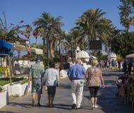 L'Espagne, Îles Canaries, Ténérife, Puerto de la cruz, le 23 décembre, images libres de droits