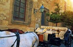 L'Espagne, touristes de attente de chariot de cheval s'approchent de la cathédrale antique images stock