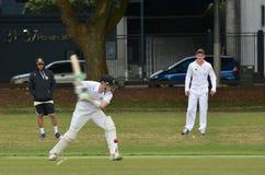L'essai de batteur de cricket bloque la boule Image libre de droits