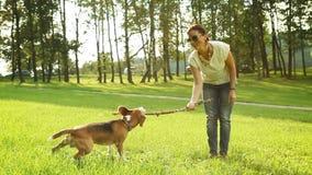 L'essai sautant du chien d'obtenir le bâton, que le maître a clips vidéos